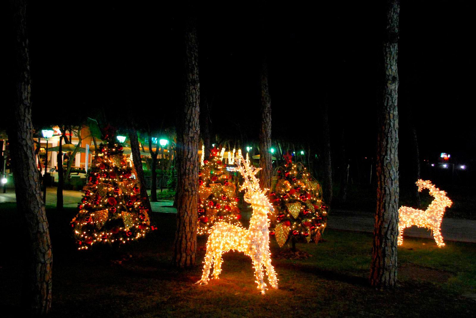 Alquiler de luces de navidad alquiler iluminaci n - Renos de navidad con luces ...