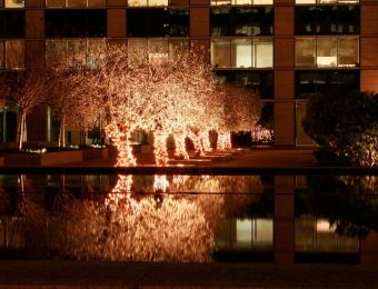 iluminaciones modernas navidad